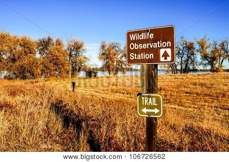 Wildlife Observation Station At A Lake