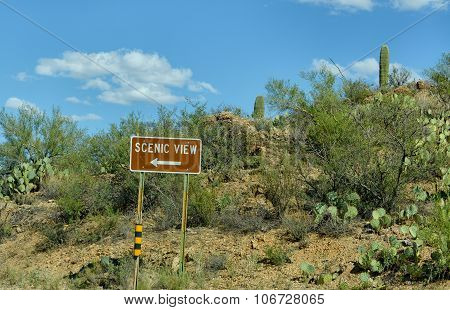 Scenic View Road Sign In Desert
