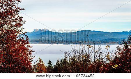 Fog over the Fraser River in Glen Valley