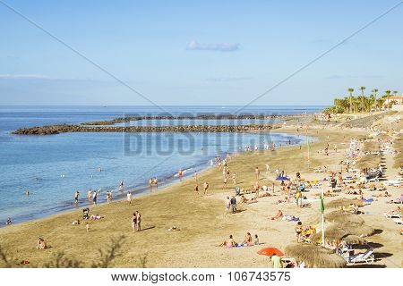 Sandy Beach With Thatched Parasols And Sunbeds, Costa Adeje, Tenerife, Spain