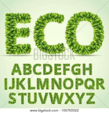 Green ABC