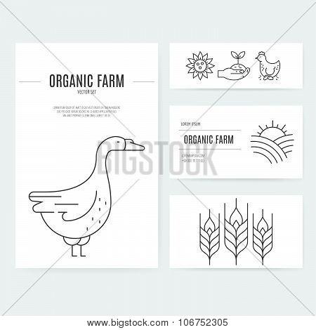 Farming Business Identity