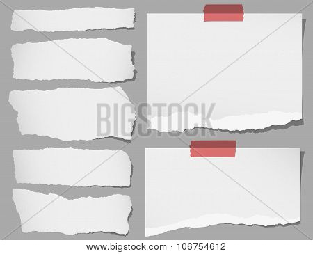 Set of various gray torn note papers with adhesive tape