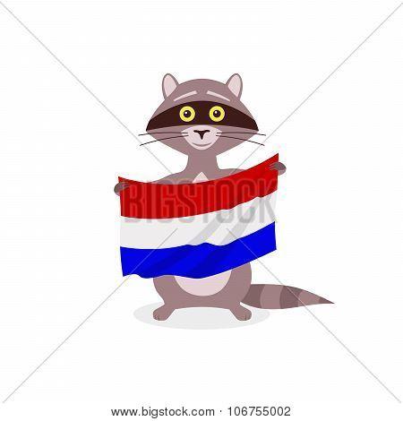 Raccoon And Flag Netherlands
