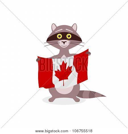 Raccoon And Flag Canada