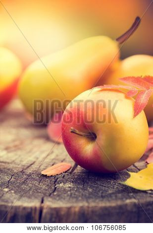 Autumn background. Beautiful vintage styled autumn fruits and colorful leaves over wooden table