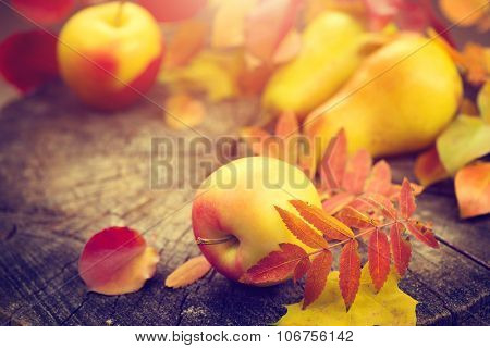 Thanksgiving border background. Autumn Fall background with colorful leaves, apples and pears, Beautiful vintage styled autumn fruits and colorful leaves over wooden table