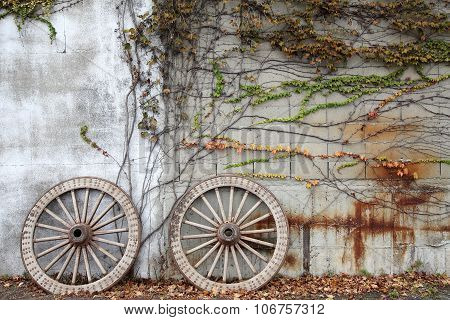 wooded cart wagon wheel