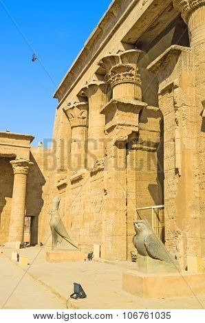 The Falcones Of Edfu
