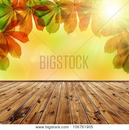 Autumn leaves of chestnut tree (Aesculus hippocastanum) with wooden board