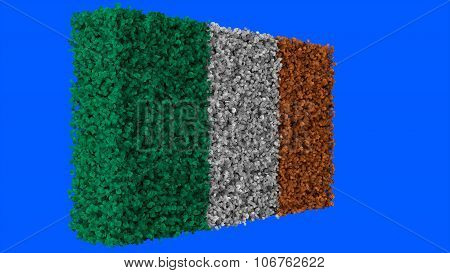 Flag of Ireland, Irish Flag made from leaves