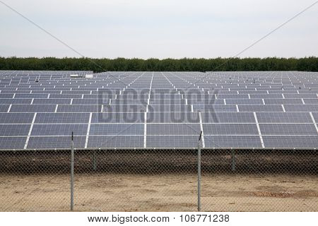 Solar Panels collecting sun light to produce electricity