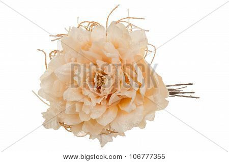 Decorative  christmas artificial creme flower isolated.