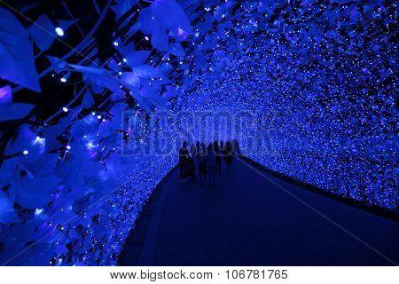 Japan Illumination