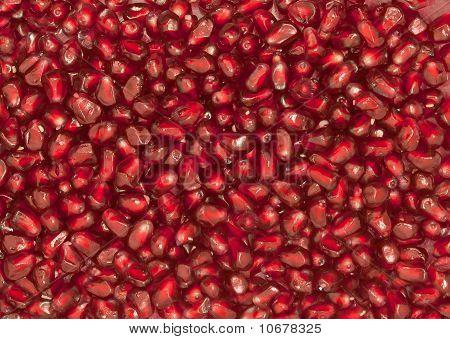 Grain Of The Garnet