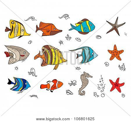 Set with coral fishes. For your design, announcements, postcards, posters.