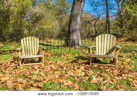 Autumn relaxation