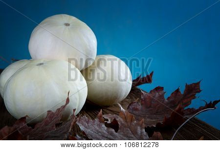 Small White Pumpkin And Dry Leaves