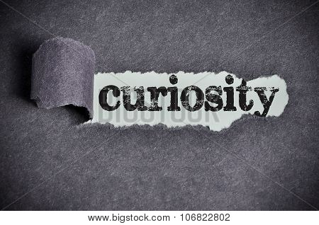 Curiosity  Word Under Torn Black Sugar Paper