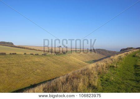 Horsedale Valley