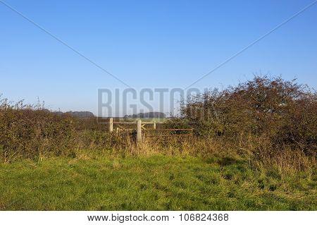 Farm Gate In Horsedale