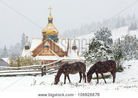 Horses grazing in front of traditional orthodox church in Carpathians mountains, Ukraine