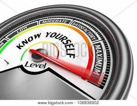 Know Yourself  Level To Maximum Conceptual Meter