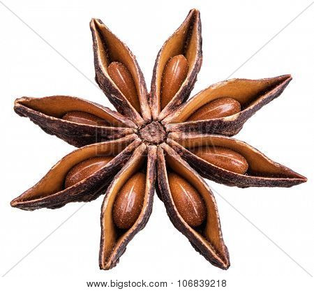 Anise star with seeds in it. File is of high quality and contains clipping paths.
