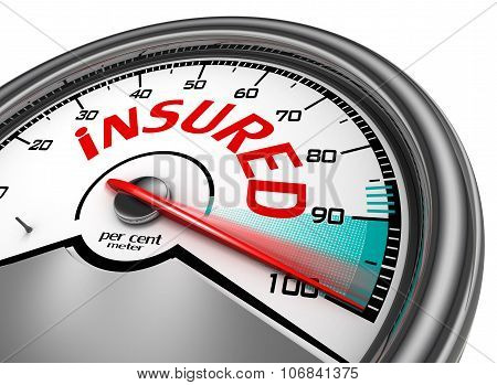 Insured Conceptual Meter Indicate Hundred Per Cent