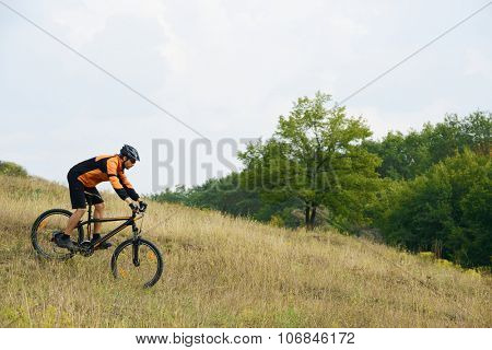 Cyclist Riding the Mountain Bike Down Hill on the Autumn Meadow in the Beautiful Forest