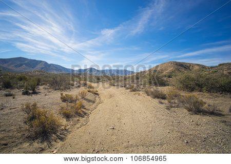 Forgotten Dirt Road