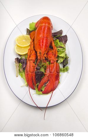 Lobster With Salad And Lemon Slice On A Plate