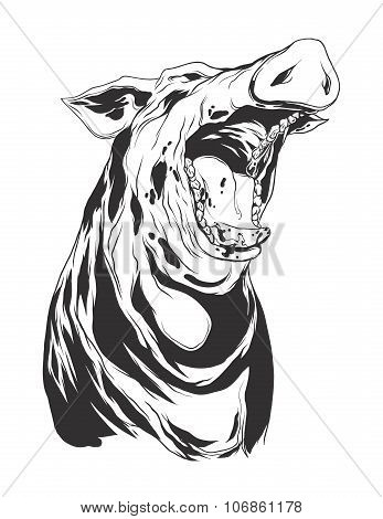 Vector Illustration With Hog Head