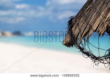 Grass Leaf Palm Sun Umbrella With Sea Background