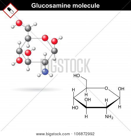 Glucosamine Molecule Structure