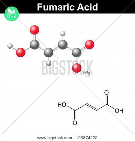 Fumaric Acid Molecule