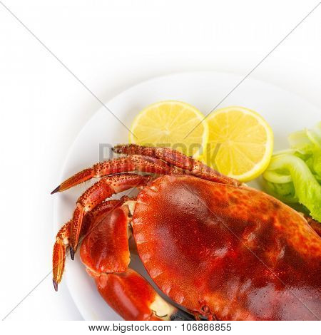 Red tasty boiled crab with fresh green lettuce salad and lemon isolated on white background, delicious seafood, luxury restaurant menu
