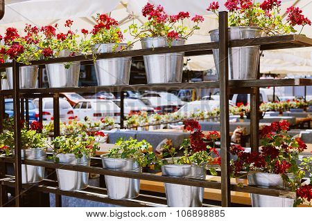 Shelving With Flowers In Iron Bucket