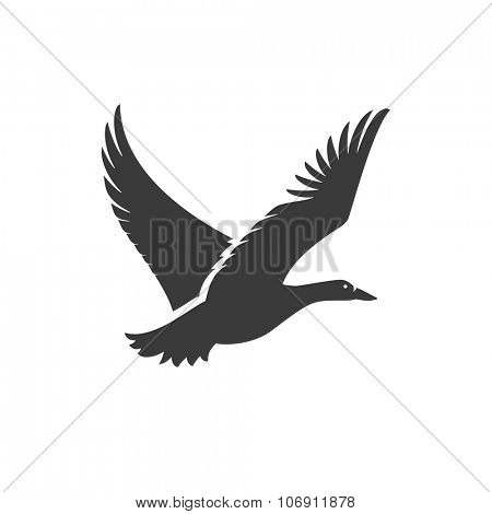 Duck Flying Side View Isolated On White Background Vector object for Labels, Badges, Logos  and other Design.