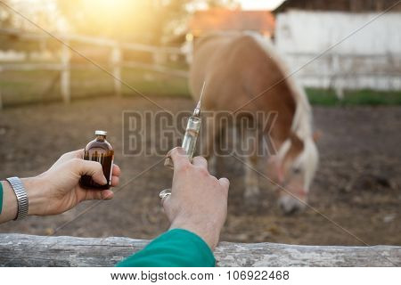Veterinarian With Syringe On Farm
