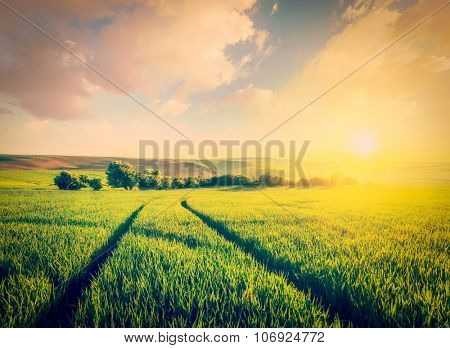 Vintage retro effect filtered hipster style image of Beuatiful sunset in fields of Moravia, Czech Republic