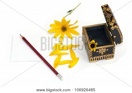 Still Life An Open Casket, A Yellow Flower, Petals And A Pencil With Paper