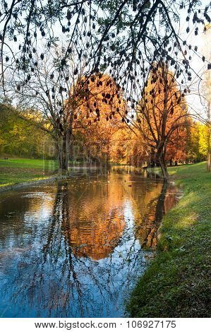 Bright morning over river in the forest. River and trees in fall. Autumnal morning