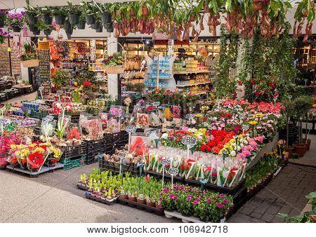 The flower market in Amsterdam, Netherlands.