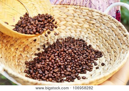 Woman spills wattled basket with roasted coffee beans