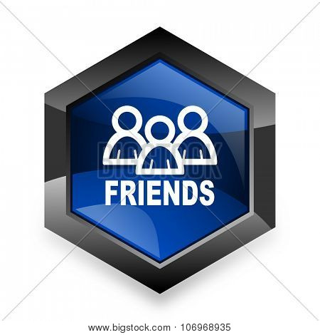friends blue hexagon 3d modern design icon on white background