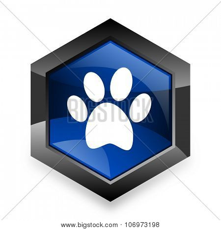 foot blue hexagon 3d modern design icon on white background