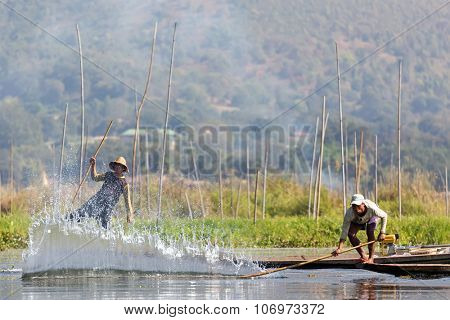 INLE LAKE, MYANMAR, JANUARY 26, 2015 : A Burmese fisherman is splashing the water surface to make the fishes entering the net, traditional fishing in the Inle lake, Myanmar (Burma).