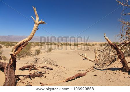 Dead valley in California