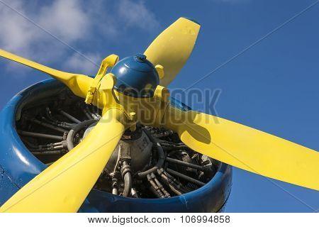 Yellow propeller